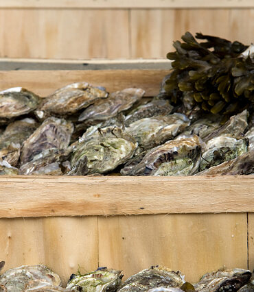 crates of oysters
